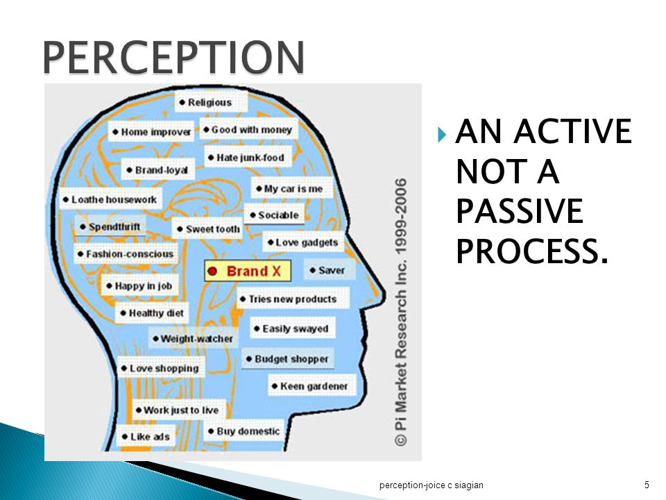 PERCEPTION AN ACTIVE NOT A PASSIVE PROCESS. perception-joice c siagian