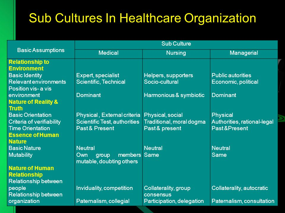 Sub Cultures In Healthcare Organization