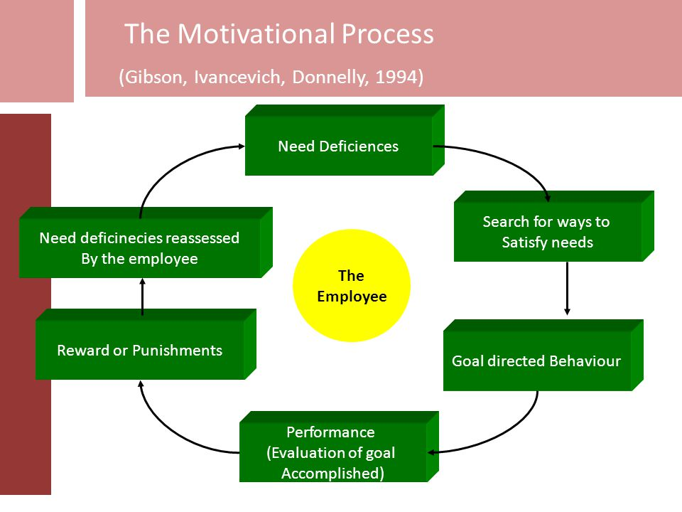 The Motivational Process (Gibson, Ivancevich, Donnelly, 1994)