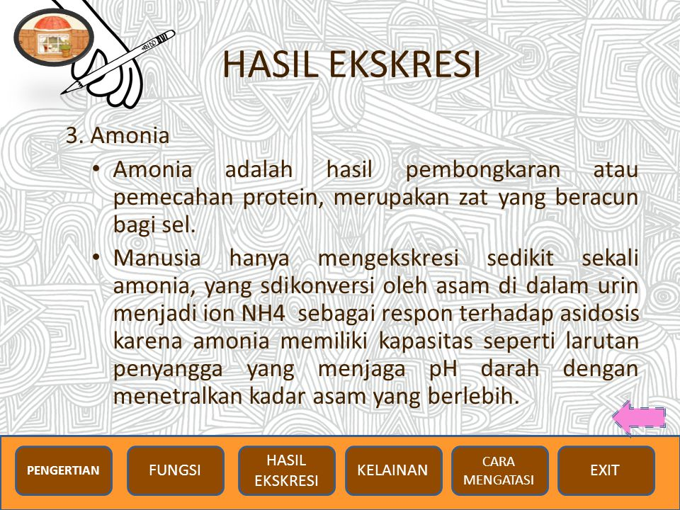HASIL EKSKRESI 3. Amonia. Amonia adalah hasil pembongkaran atau pemecahan protein, merupakan zat yang beracun bagi sel.