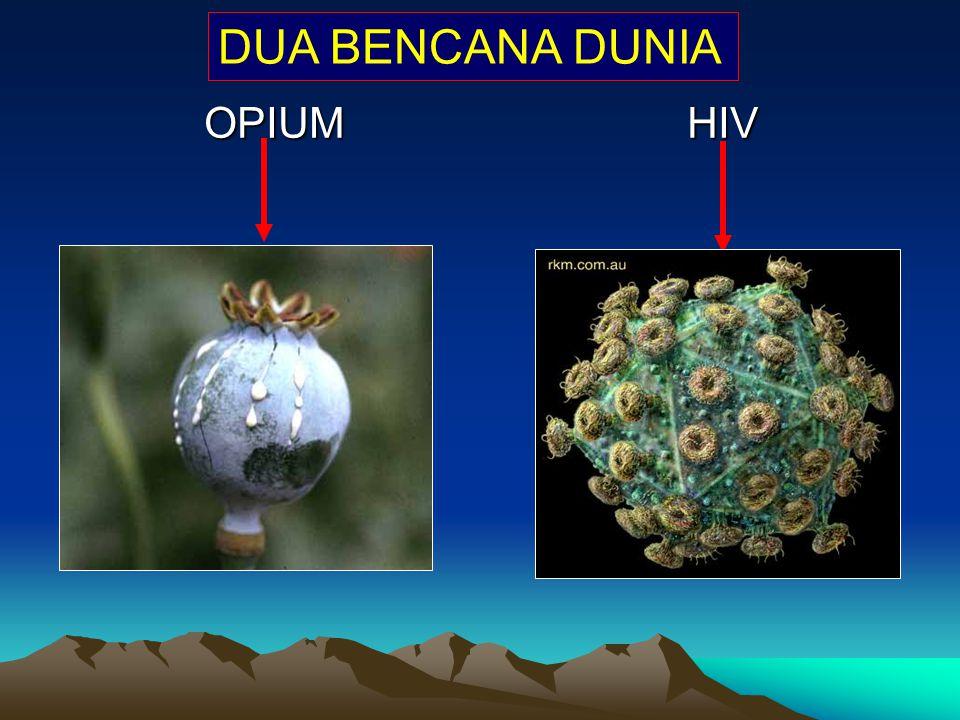 DUA BENCANA DUNIA OPIUM HIV