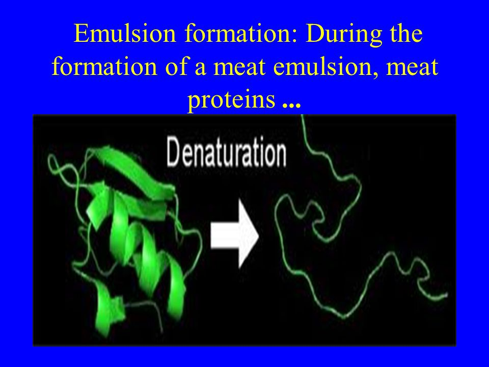 Emulsion formation: During the formation of a meat emulsion, meat proteins ...
