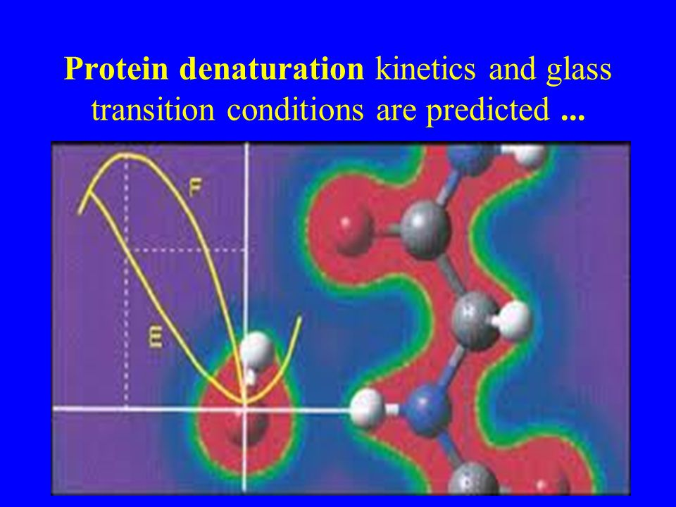 Protein denaturation kinetics and glass transition conditions are predicted ...