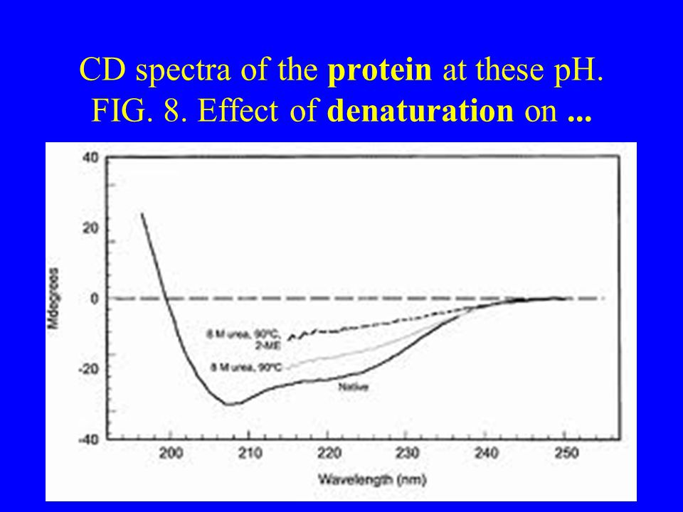 CD spectra of the protein at these pH. FIG. 8