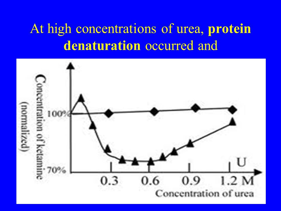 At high concentrations of urea, protein denaturation occurred and