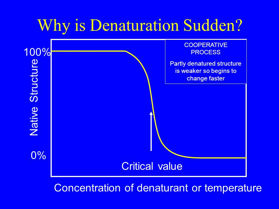 Why is Denaturation Sudden