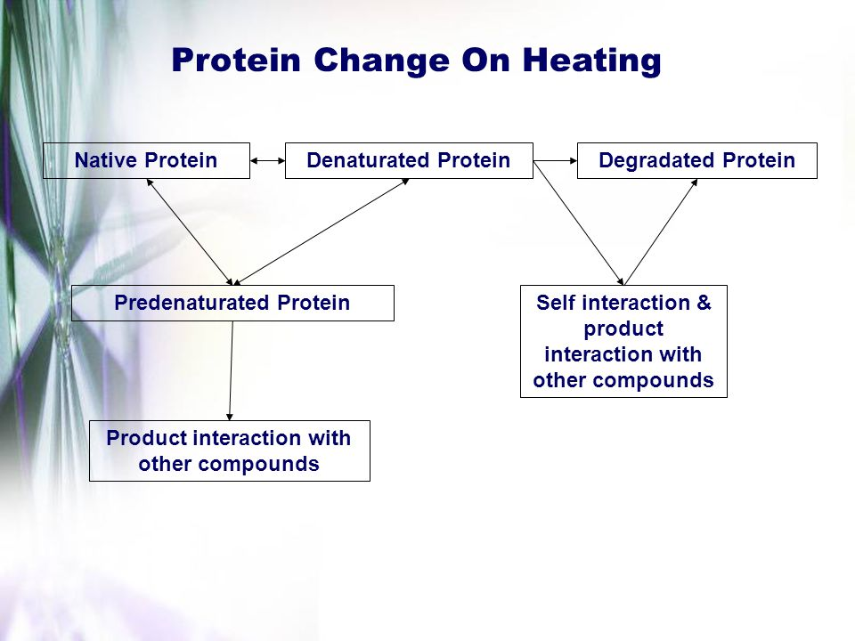 Protein Change On Heating