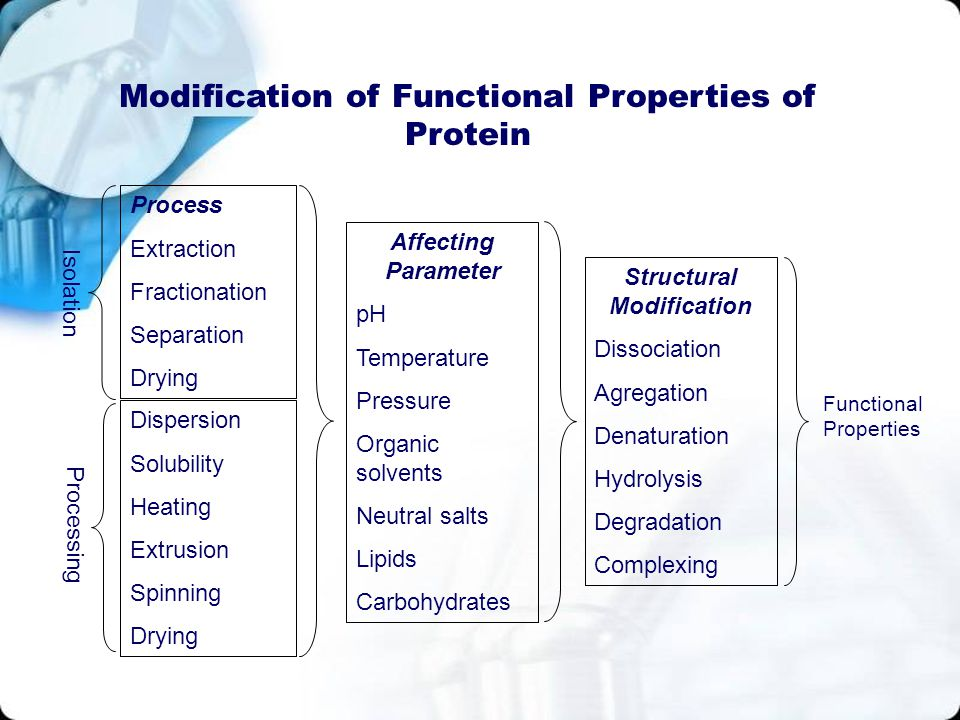 Modification of Functional Properties of Protein