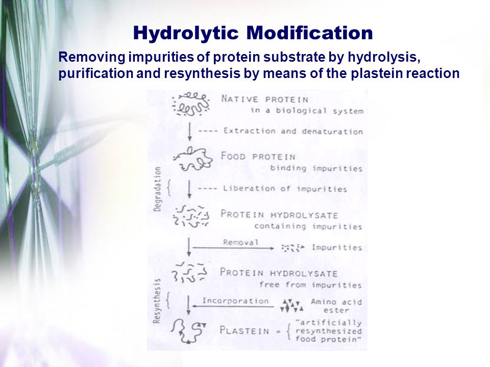 Hydrolytic Modification