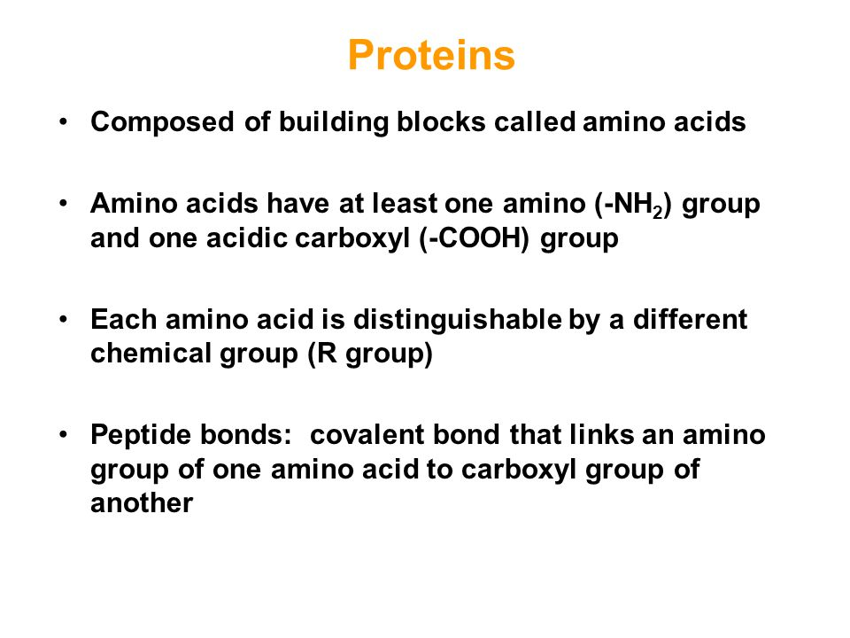 Proteins Composed of building blocks called amino acids