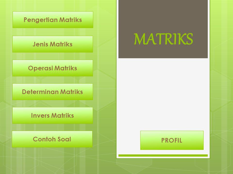 MATRIKS Pengertian Matriks Jenis Matriks Operasi Matriks