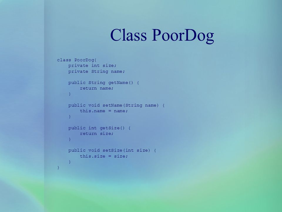 Class PoorDog class PoorDog{ private int size; private String name;
