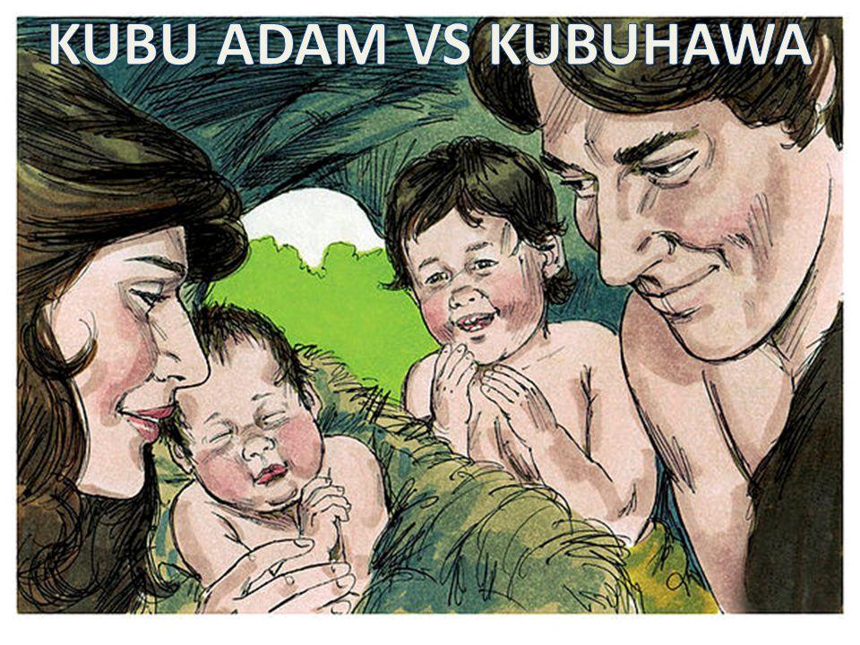 KUBU ADAM VS KUBUHAWA