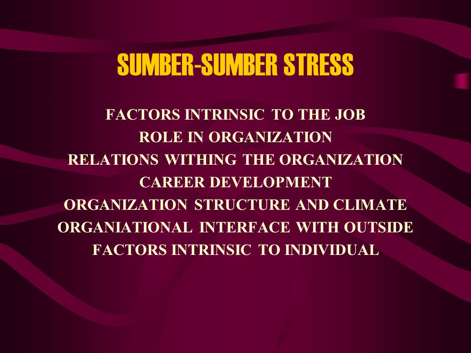 SUMBER-SUMBER STRESS FACTORS INTRINSIC TO THE JOB ROLE IN ORGANIZATION