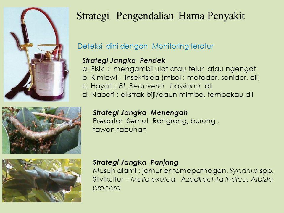 Strategi Pengendalian Hama Penyakit