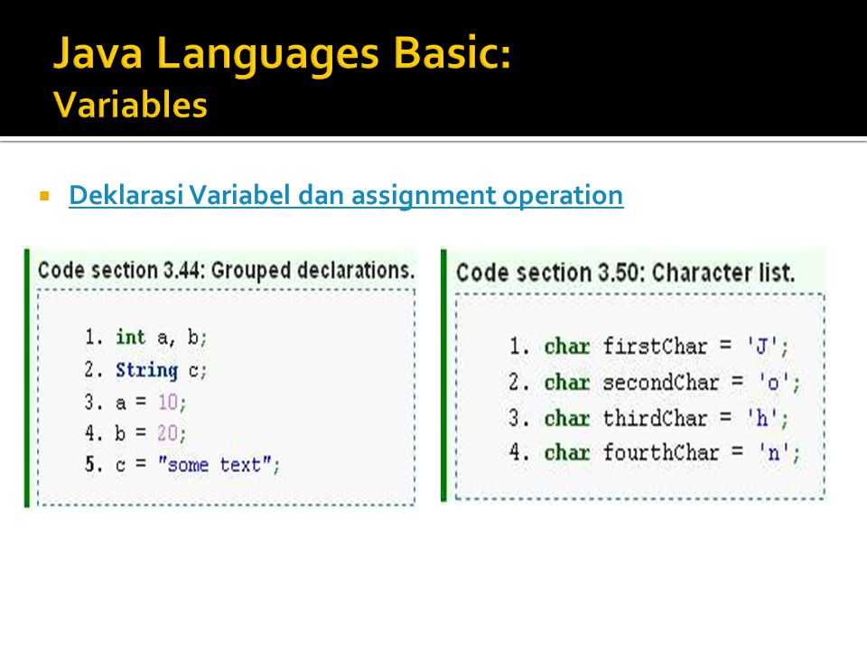 Java Languages Basic: Variables