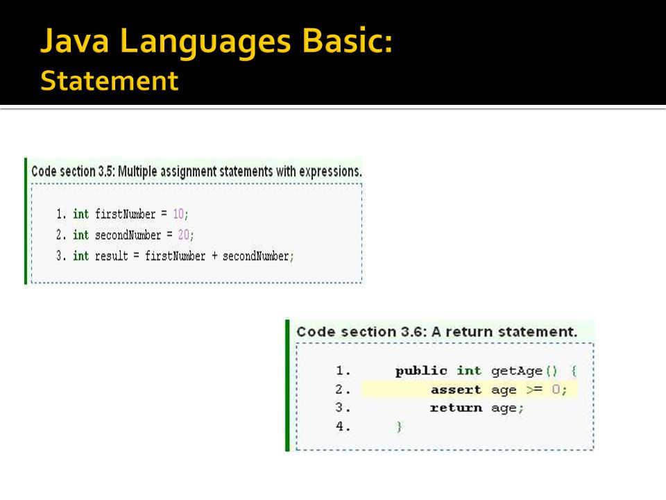 Java Languages Basic: Statement