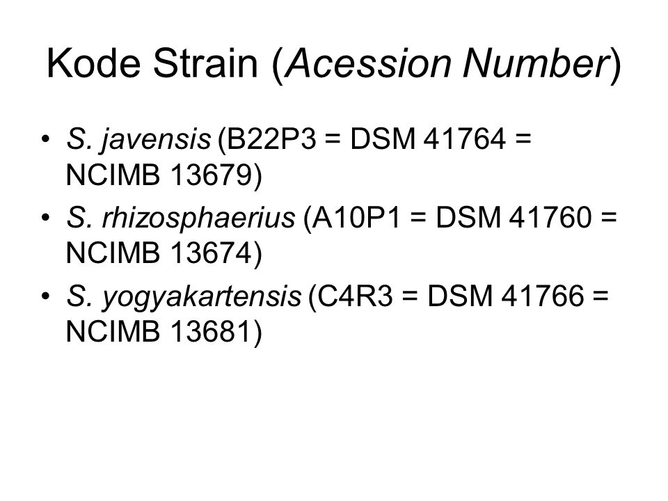 Kode Strain (Acession Number)
