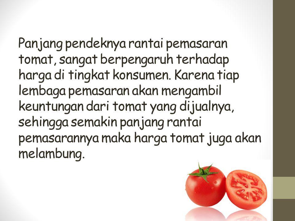 Panjang pendeknya rantai pemasaran tomat, sangat berpengaruh terhadap harga di tingkat konsumen.