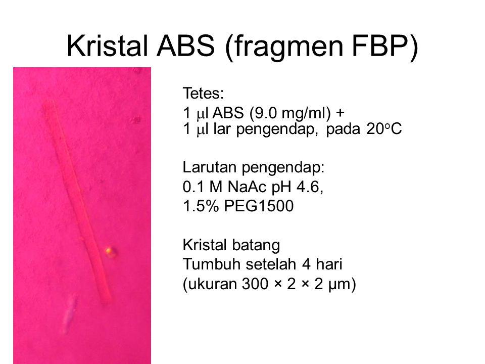 Kristal ABS (fragmen FBP)