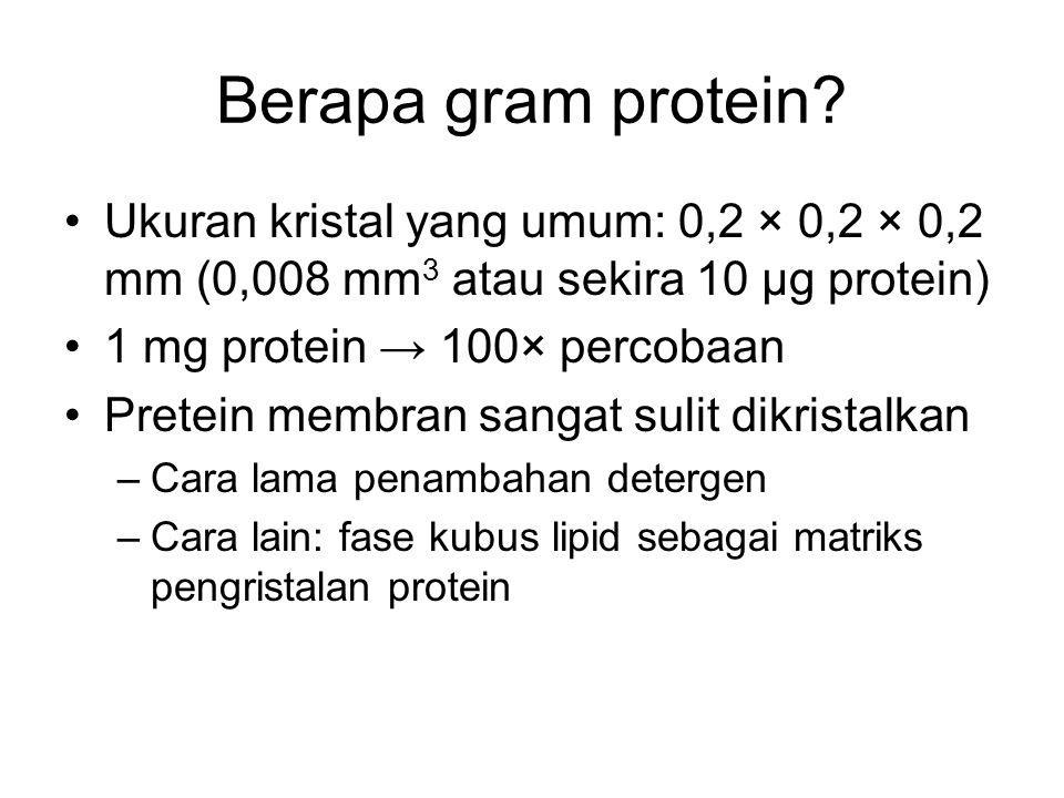 Berapa gram protein Ukuran kristal yang umum: 0,2 × 0,2 × 0,2 mm (0,008 mm3 atau sekira 10 µg protein)