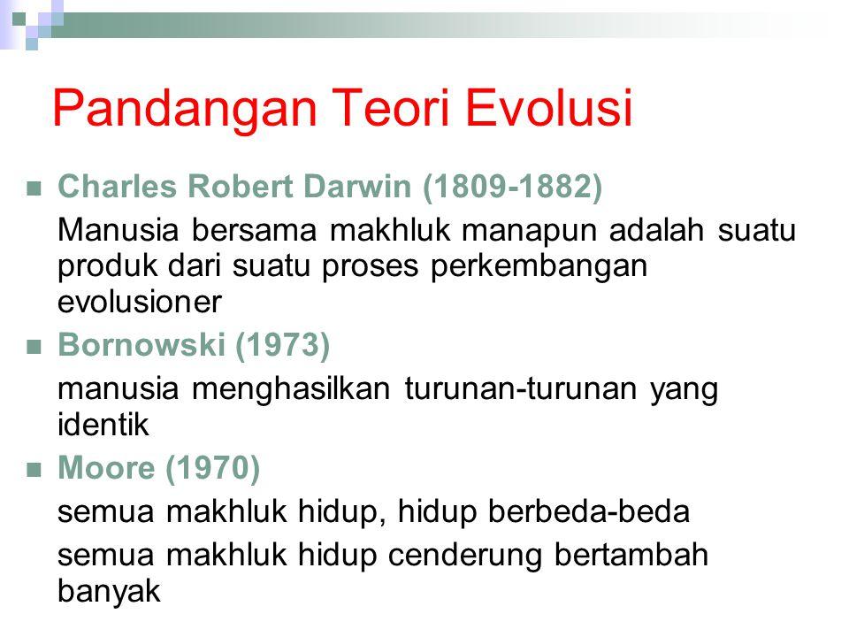 Pandangan Teori Evolusi