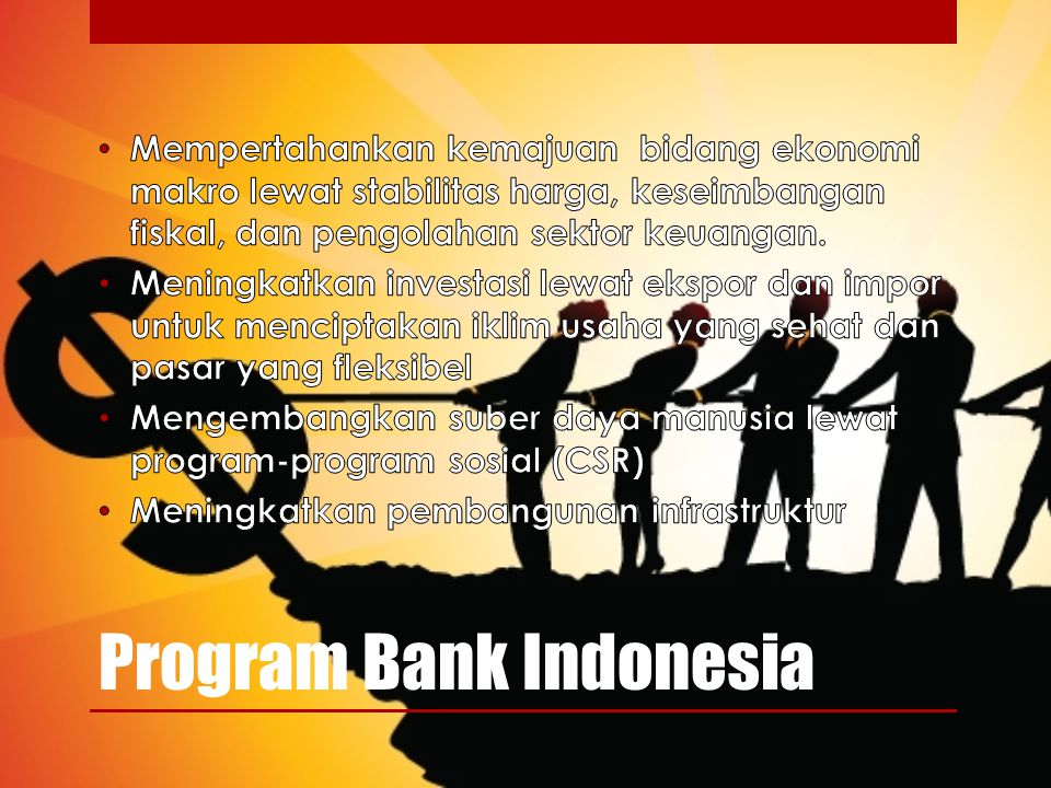 Program Bank Indonesia