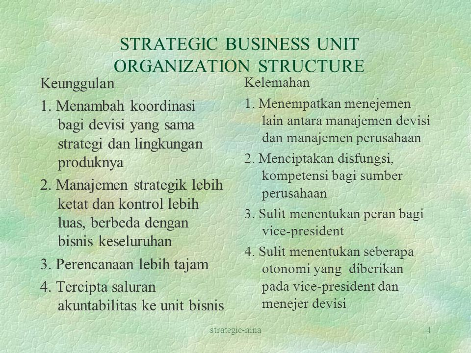 STRATEGIC BUSINESS UNIT ORGANIZATION STRUCTURE