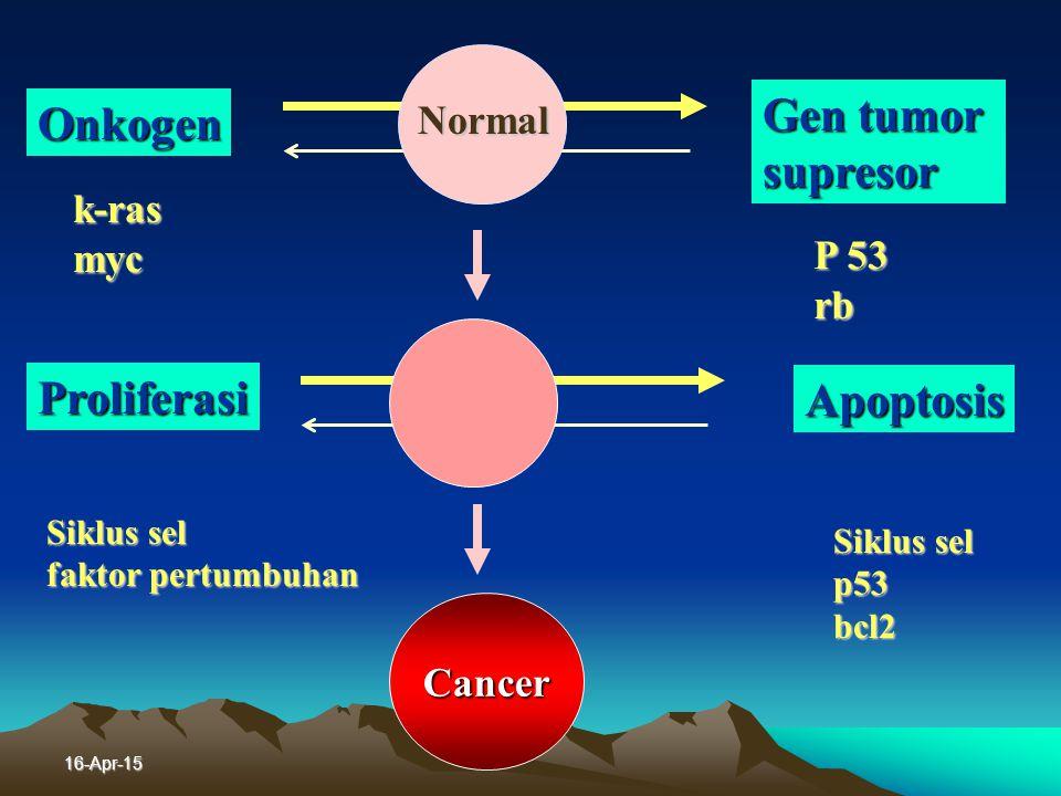 Gen tumor Onkogen supresor Proliferasi Apoptosis Normal k-ras myc P 53