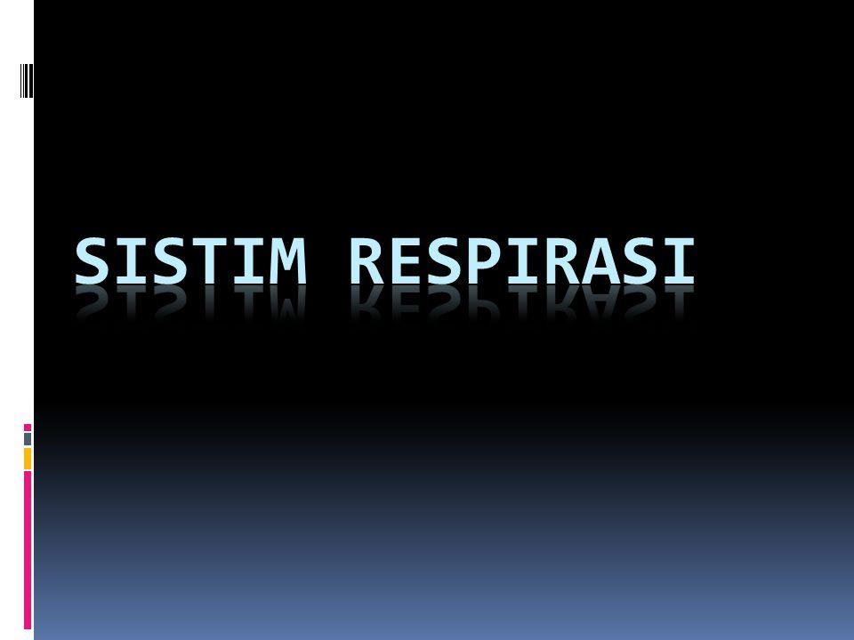 SISTIM RESPIRASI