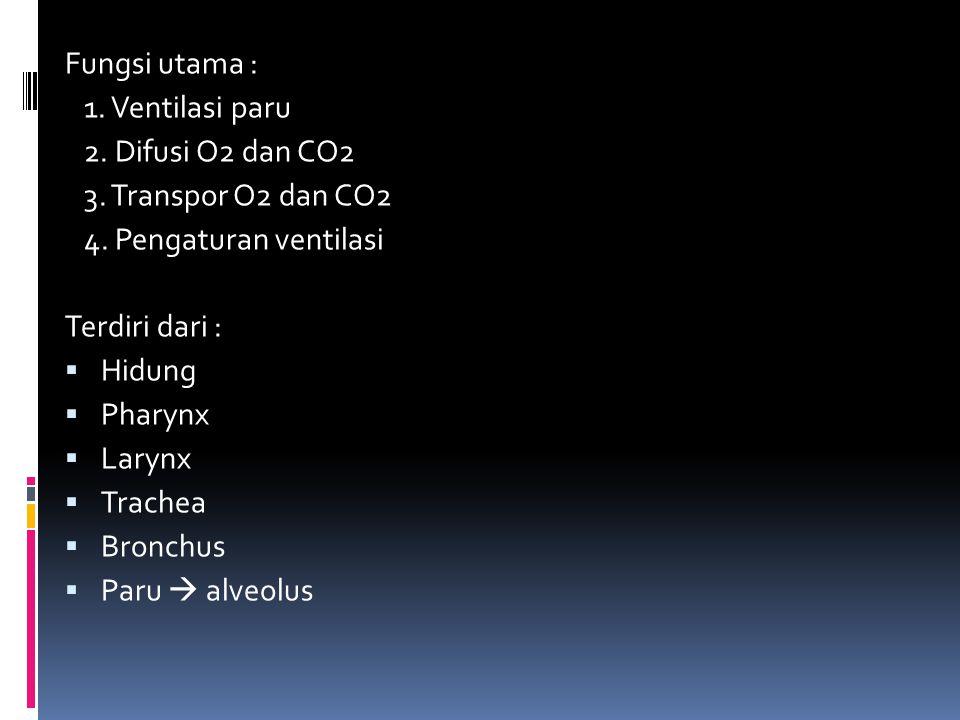 Fungsi utama : 1. Ventilasi paru. 2. Difusi O2 dan CO2. 3. Transpor O2 dan CO2. 4. Pengaturan ventilasi.
