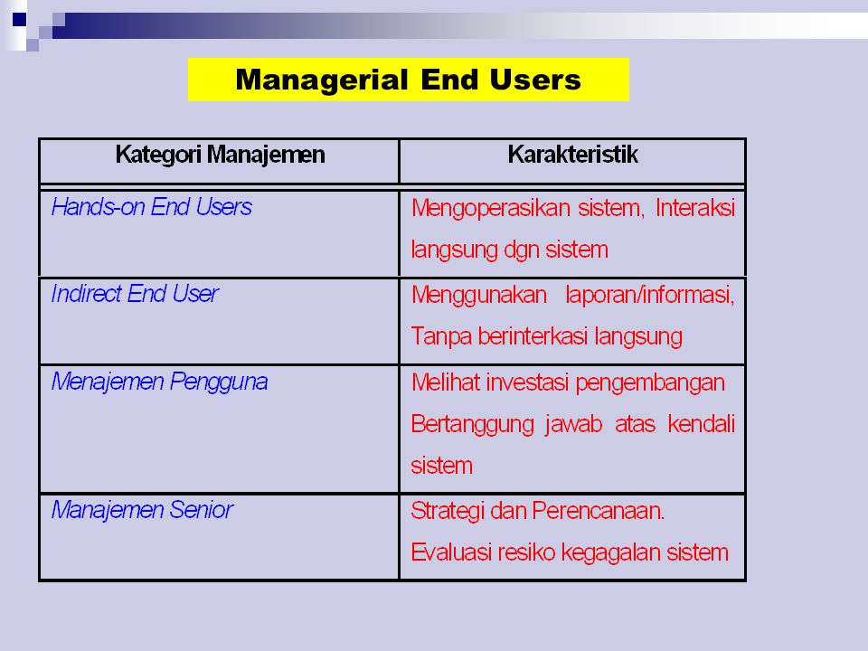 Managerial End Users