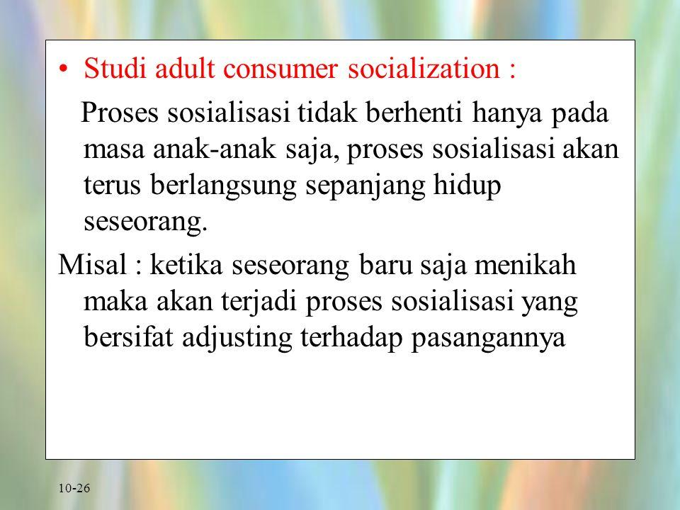 Studi adult consumer socialization :