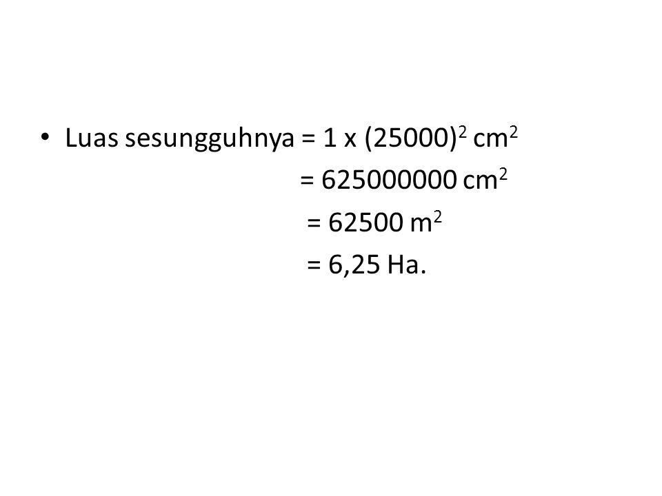 Luas sesungguhnya = 1 x (25000)2 cm2