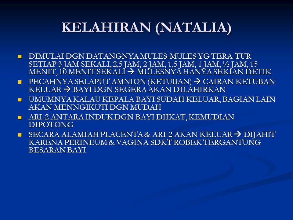 KELAHIRAN (NATALIA)