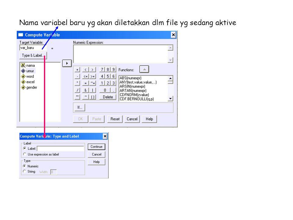 Nama variabel baru yg akan diletakkan dlm file yg sedang aktive