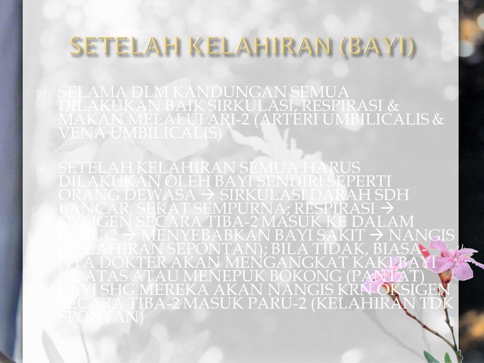 SETELAH KELAHIRAN (BAYI)