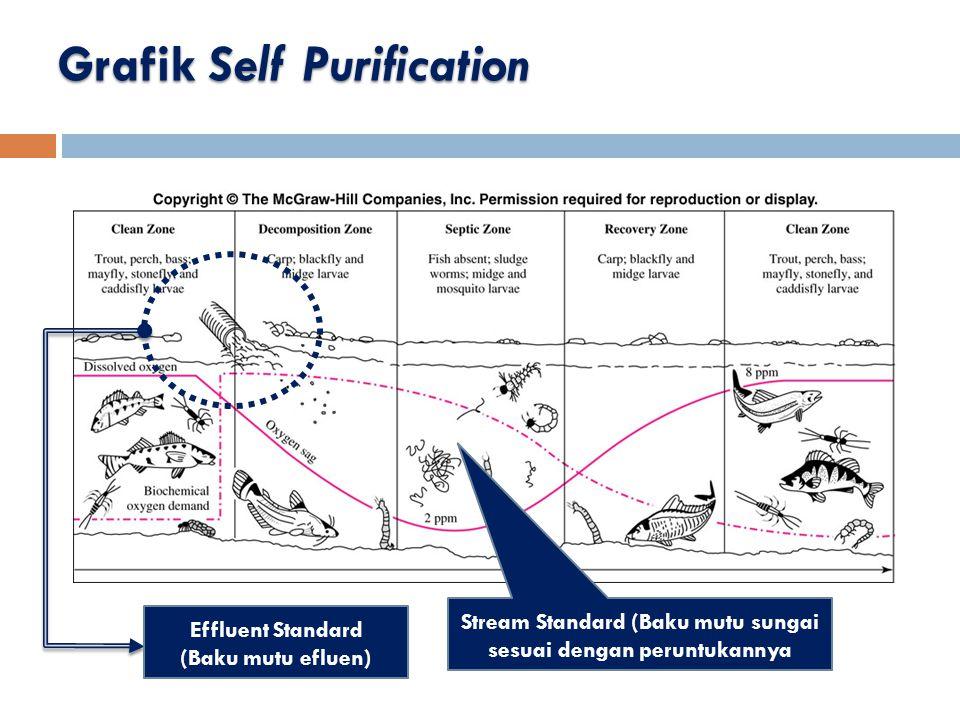 Grafik Self Purification