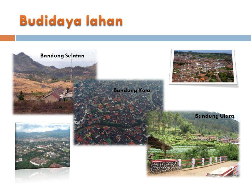 Budidaya lahan Bandung Selatan Bandung Kota Bandung Utara