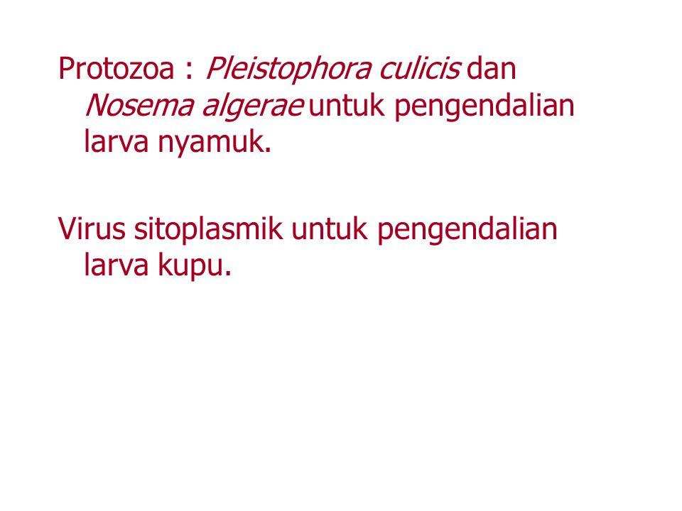Protozoa : Pleistophora culicis dan Nosema algerae untuk pengendalian larva nyamuk.