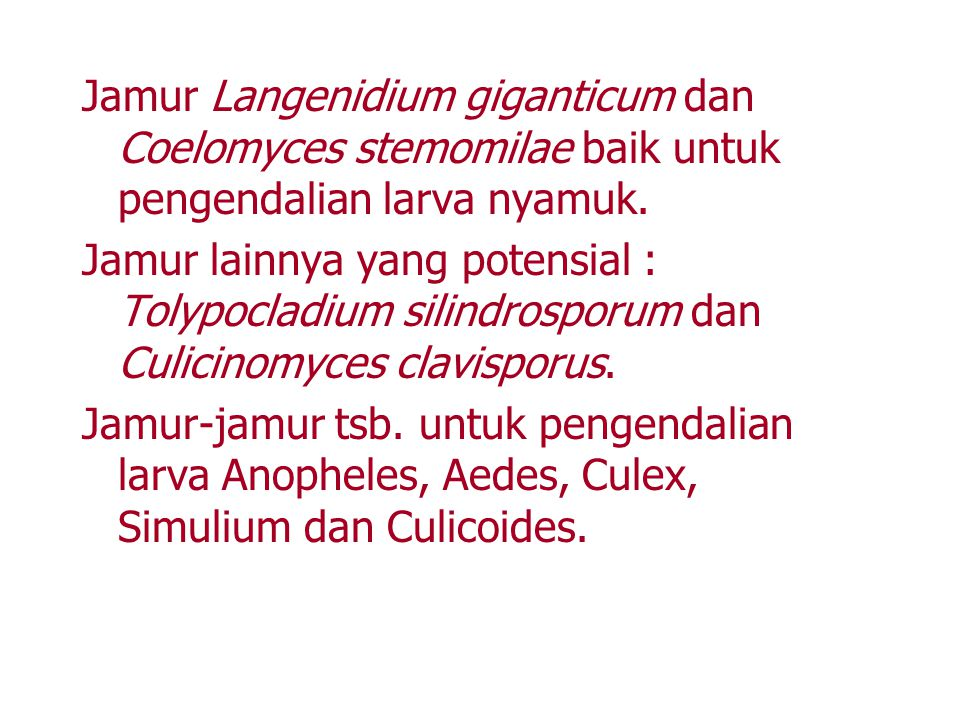Jamur Langenidium giganticum dan Coelomyces stemomilae baik untuk pengendalian larva nyamuk.