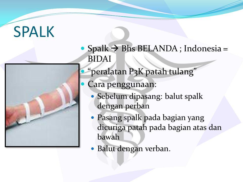 SPALK Spalk  Bhs BELANDA ; Indonesia = BIDAI