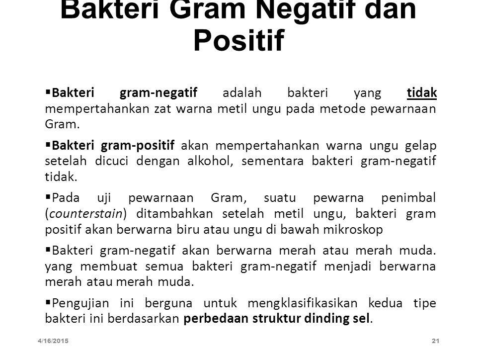 Bakteri Gram Negatif dan Positif