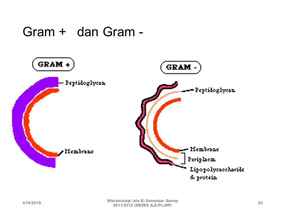 Mikrobiologi (kls E) Semester Genap 2011/2012 (DEDES A,S.Pt.,MP)
