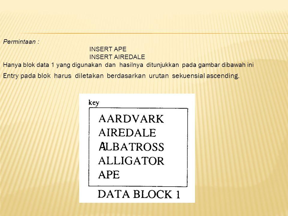 Permintaan : INSERT APE. INSERT AIREDALE. Hanya blok data 1 yang digunakan dan hasilnya ditunjukkan pada gambar dibawah ini.