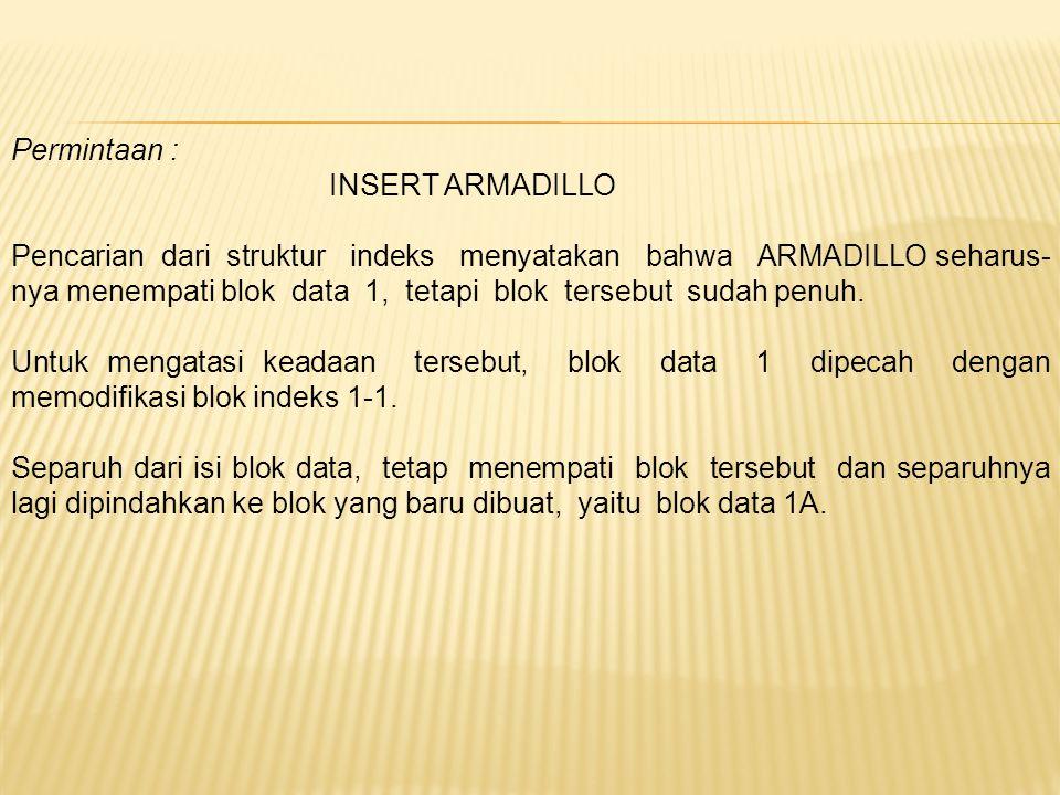 Permintaan : INSERT ARMADILLO.