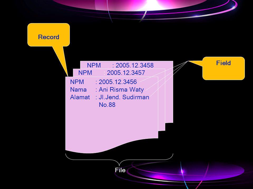 Record Field. NPM : 2005.12.3458. NPM : 2005.12.3457. NPM : 2005.12.3456. Nama : Ani Risma Waty.