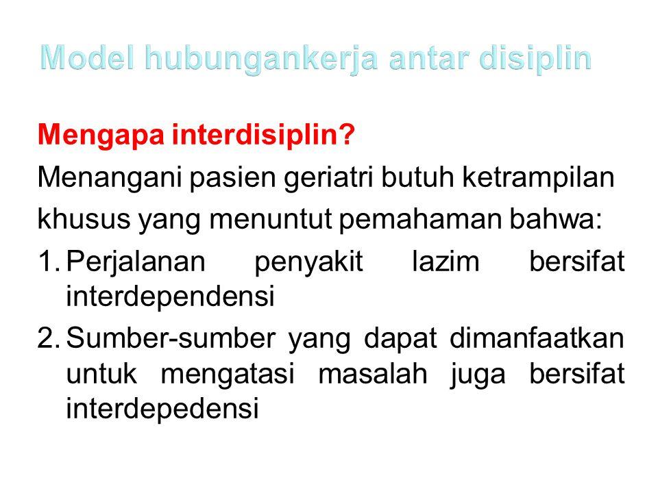 Model hubungankerja antar disiplin
