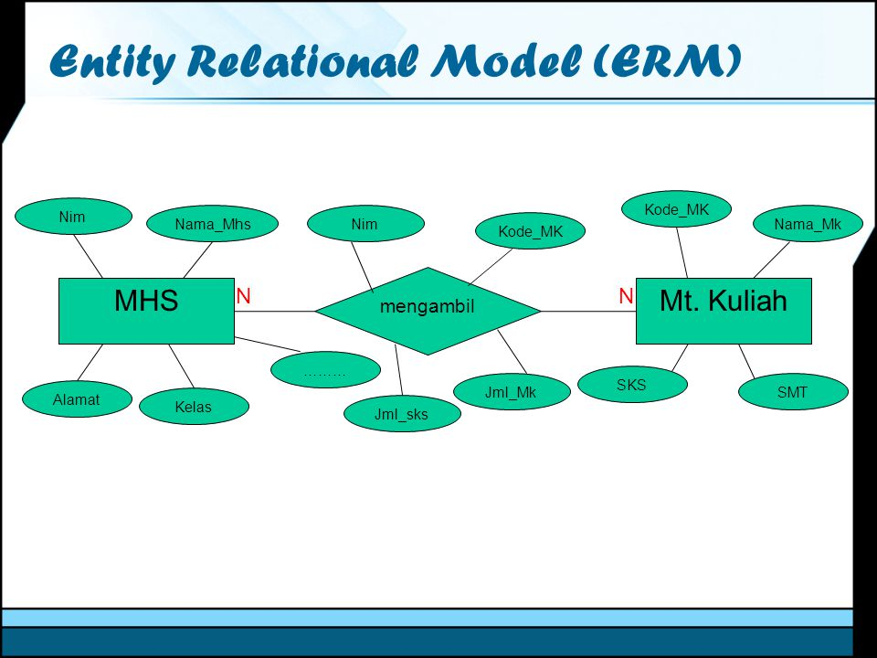 Entity Relational Model (ERM)