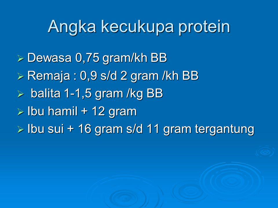 Angka kecukupa protein